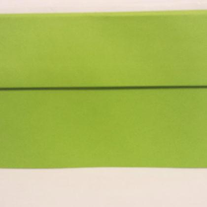 LIME GREEN DL ENVELOPES HIGH QUALITY VANGUARD GUMMED STRAIGHT FLAP